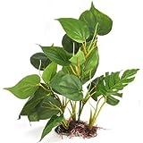 DIGIFLEX 30 cm künstliche Aquariumpflanze, grüne echt aussehende Aquarium-Zierblätter, Plastikpflanzen für Aquarien
