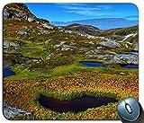 Nature Mountains Teich Wasserpflanzen Felsen Mauspad Anti-Rutsch-Desktop-Mauspad Gaming-Mauspad